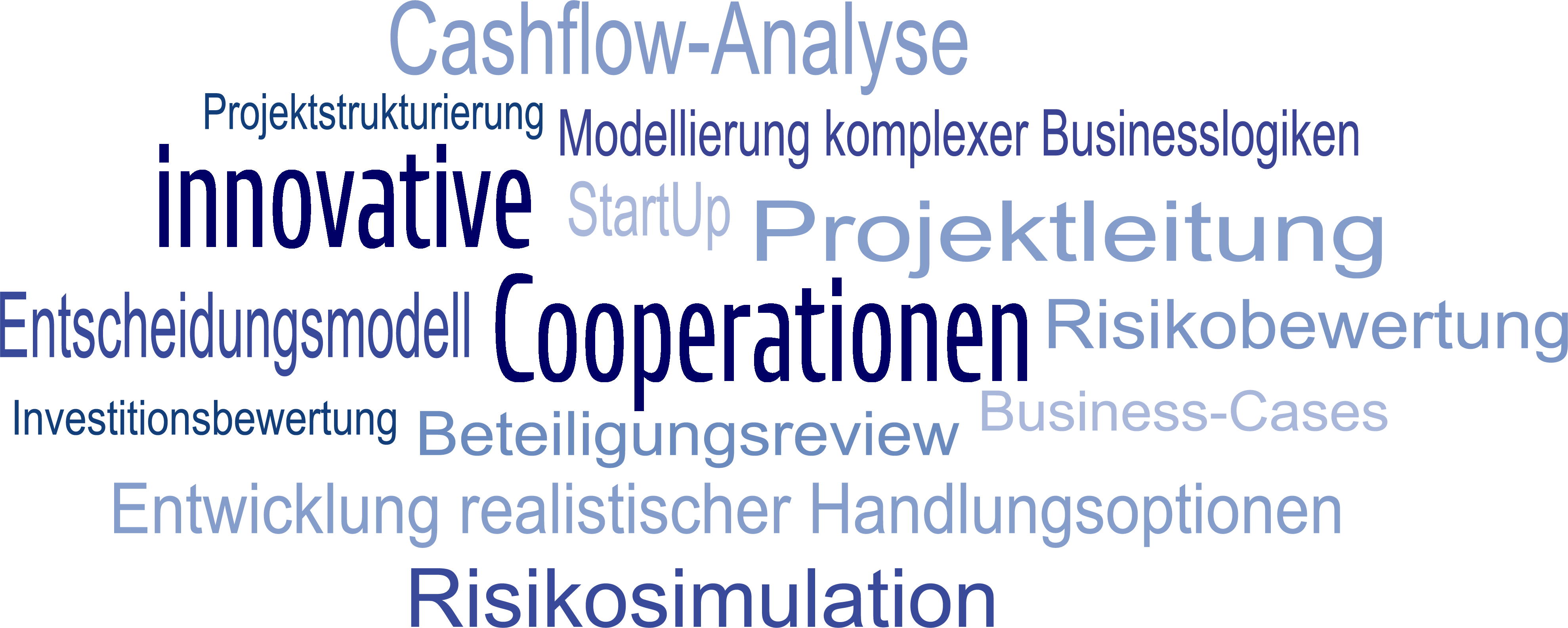 Wortwolke - innovative Cooperationen / Risikosimulation / Entscheidungsmodell / Projektleitung / Cashflow-Analyse